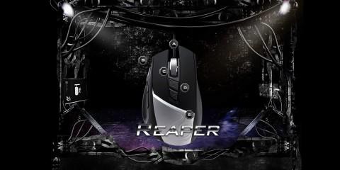 para_reaper