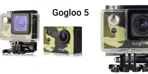 gogloo5wall